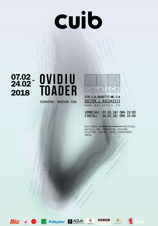 Afis-EXPO-Cuib---Ovidiu-Toader