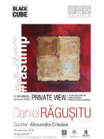 Poster_Daniel Ragusitu_PRIVATE VIEW