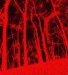 contactless_art_wall_Fireflies_ III_ digital_ art_ 2020_galateca