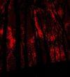 contactless_art_wall_Fireflies_ II_ digital_ art_ 2020_galateca