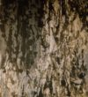 #aschermittwoch 155 x120 cm, malerei informell